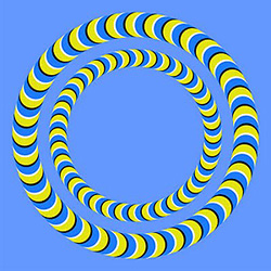 amazing-dillusions-disillusions
